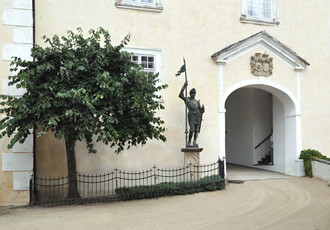 Silver linden in the first courtyard